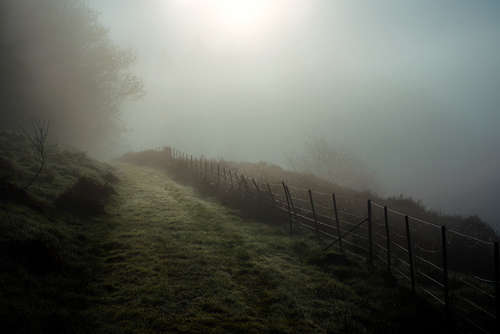 Foggy-Track-Lochavich-_UNFLAT-1