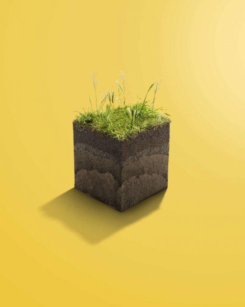 RFee_SP_Soil_crop-1600×2000